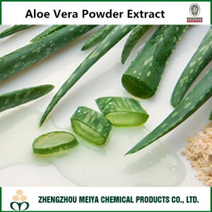 Hot Sale 100% Natural Aloe Vera Powder Extract 10: 1 with Aloin for Food, Cosmetic pictures & photos