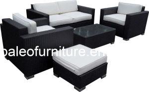 Outdoor/ Garden Rattan Furniture / Rattan Sofa Set (PAS-060)