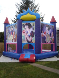Inflatable Bouncy Castle (FC-653)