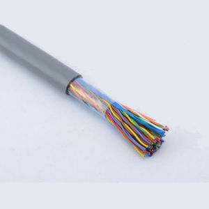 Ce/RoHS Approved UTP Cat3 LAN Cable 50 Pairs pictures & photos
