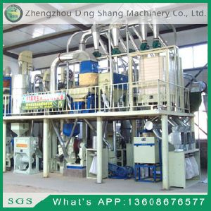 50t Per Day Corn Processing Equipment FTA50