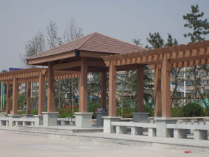 Fire-Resistant Waterproof Environment Outdoor WPC Wood Plastic Composit Decking Flooring/Decking/Panel/Board pictures & photos