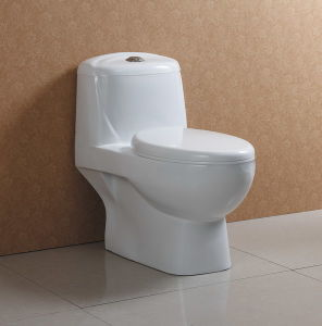 Dual Flush Water Closet at-546