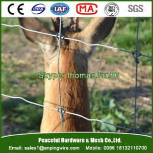 Fixed Knot Deer Fence / Grassland Wire Fencing / Livestock Netting pictures & photos