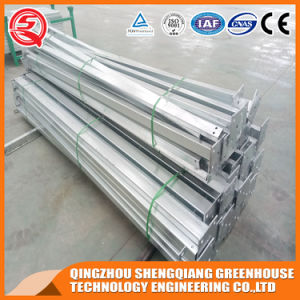 Multi-Span Steel Structure PC Sheet Greenhouse for Fruit pictures & photos