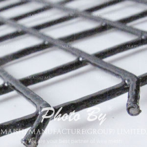 Black Powder Stainless Steel Welded Mesh pictures & photos