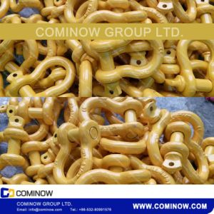 Screw Pin Anchor Bow Shackle G209 Us Type Drop Forged Galvanized pictures & photos