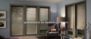 Aluminum Mini Window Blinds Quality Windows Blinds pictures & photos