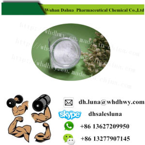 Bodybuilding Supplement Testosterone Enanthate for Muscle Building pictures & photos