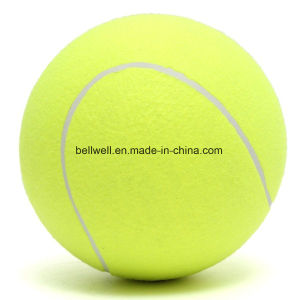 Different Type Custom Pet Dog Tennis Ball pictures & photos
