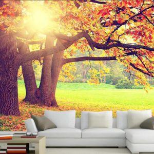 Photo Nature Landscape Digital Printing Wallpaper for Home Decoration pictures & photos