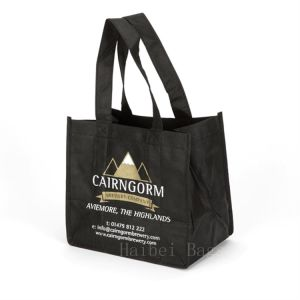 6 Premium Beer Bottle Bag with Folding Dividers (hbnb-579) pictures & photos