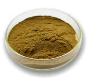 Mulberry Leave Extract for Food and Cosmetics pictures & photos
