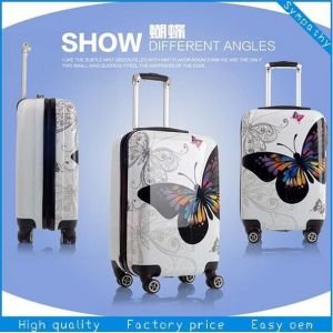 Bwf1-208 Fashion Delsey Trolley Luggage, Suitcase Luggage pictures & photos
