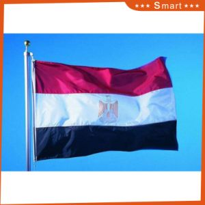 Custom Made Huge Size National Flag and Huge Flag (sizes are various according to customer′s requirements) pictures & photos