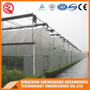 Commercial Frame/ Vegetable/ Graden Plastic Film Greenhouse pictures & photos
