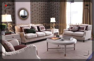 New Classic Fabric Sofa S6959-1 pictures & photos