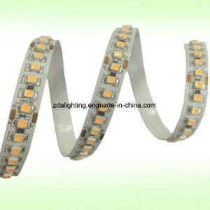 180LEDs/M 24V SMD3528 2200-3500k Warm White LED Strips pictures & photos