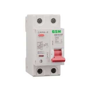 Miniature Circuit Breakers GS47-63-II pictures & photos