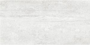 Building Material Porcelain Tiles Floor Tile 600*1200mm Anti-Slip Rustic Tile (LNC6012110M)