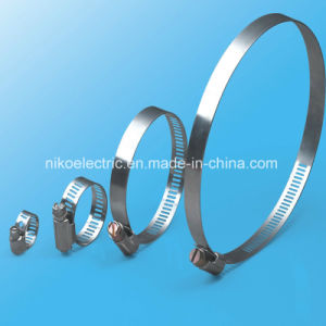 Britsh Type Hose Clamp for Marine Hose Bundling pictures & photos