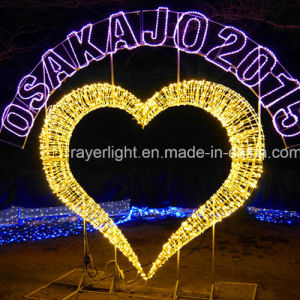 LED Decorative Light Commercial Christmas Light pictures & photos