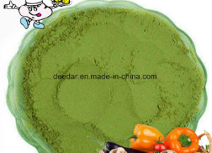 Plant Extract-Mulberry Powder pictures & photos