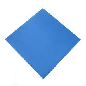 Factory Supply Living Room Anti Slip Waterproof Antibacterial Floor Mat pictures & photos