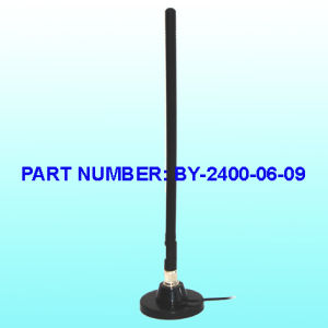 2.4G/WiFi USB Antenna pictures & photos