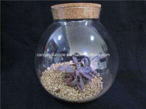 Glass Vase with Cork Lid /Glass Jar