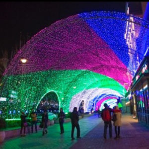 Outdoor LED Decoration IP44 4*6m 672LEDs LED Net Light pictures & photos