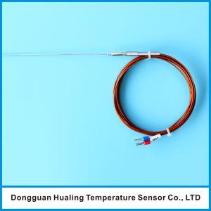 Probe Thermocouple Sensor pictures & photos
