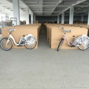 Electric Bicycle/Bike for Japan Market pictures & photos
