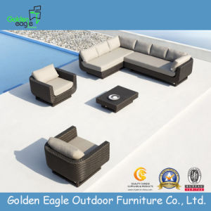 Outdoor Used PE Rattan Patio Sectional Sofa (TY0024)