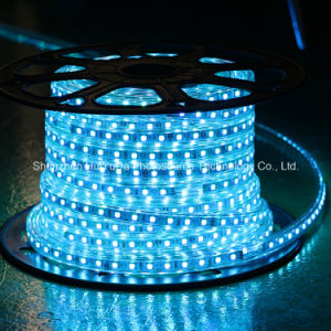 Blue Color 60LEDs SMD5050 220V IP65 LED Rope Light pictures & photos