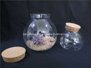 Glass Vase with Cork Lid /Glass Jar pictures & photos