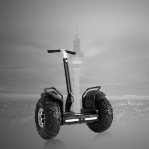 19 Inches Two Wheels Standing Scooter Electric Balance Motorcycle pictures & photos