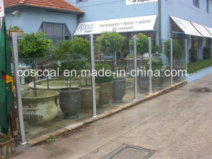 Aluminium/Aluminum Fencing (ISO9001: 2008 TS16949: 2008 Certified) pictures & photos