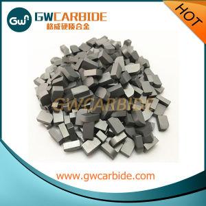Tungsten Carbide Brazed Tips Yg6 Yg6X pictures & photos