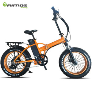 Australia Carbon Fibre Electric Bike Bicicleta Electrica 250W E Bike Australia pictures & photos
