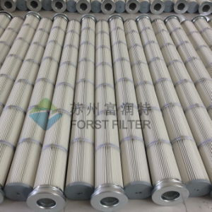Forst Dust Collection Pleated Bag Filter pictures & photos