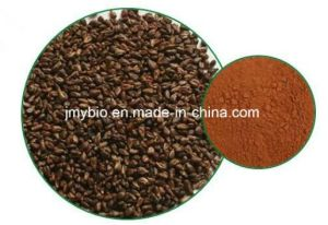 100% Pure Grape Seed Extract Procyanidine 95% Powder Plant Extract pictures & photos