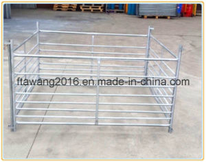 Galvanized Sheep Fencing Panel/ Iron Fence/ Livestock Fence pictures & photos