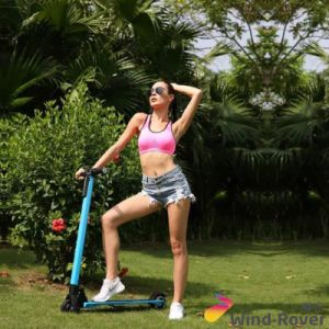 Wind Rover Folding Electric Skateboard Lightest Carbon Fiber Scooter pictures & photos