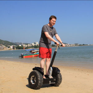 Wind Rover Cheap Kids Scooter Electric Skateboard Adults Electric Chariot pictures & photos