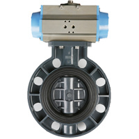 PVC Butterfly Valve JIS Standard pictures & photos