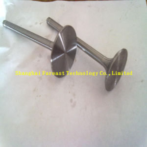 Wartsila Ud30V16/Bzshr V16 Spare Parts: Exhaust Valve and Inlet Valve pictures & photos