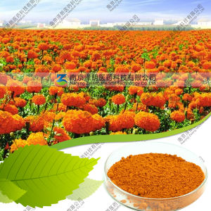 Natural Marigold Extract 10% Lutein with 0.5% Zeaxanthin and with Starch-Coated pictures & photos