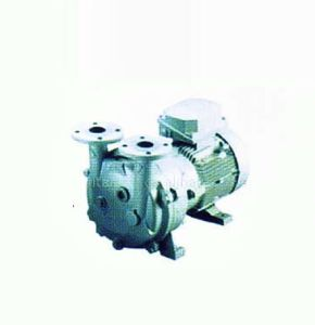 Water-Ring Vacuum Pump, Water Pump, Slurry Pump pictures & photos