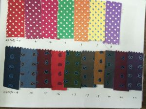 New Paisely Design Micro Fibre Fabric Necktie pictures & photos